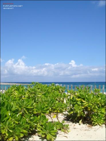 Bahamas – Atlantis (1)