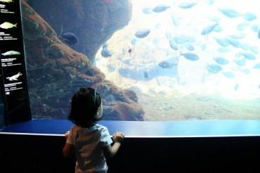 New York Aquarium at Coney Island