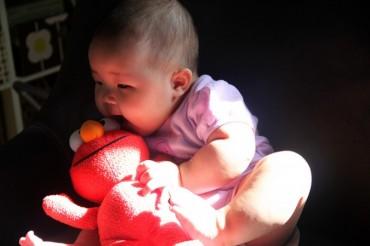 Hey Elmo – Erin is 21 weeks