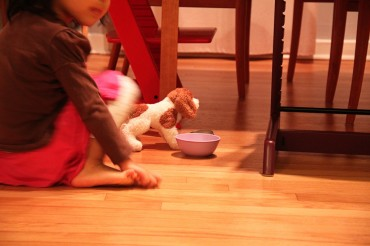 Douglas, the Dog