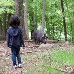Blue Hill at Stone Barns: Part 2