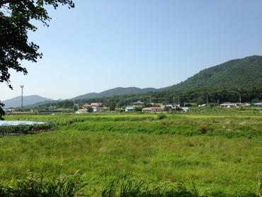 Visiting Seoul: 강화도