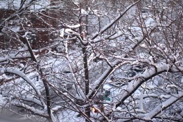 Snowfall. Big Change.