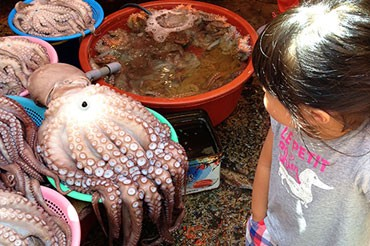 Korea 2014: 부산 자갈치 시장