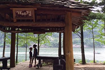 Korea 2015: 남이섬