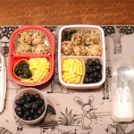 Packing Lunch: Week of 10.19.2015