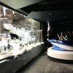 Orlando 2017 – SeaWorld